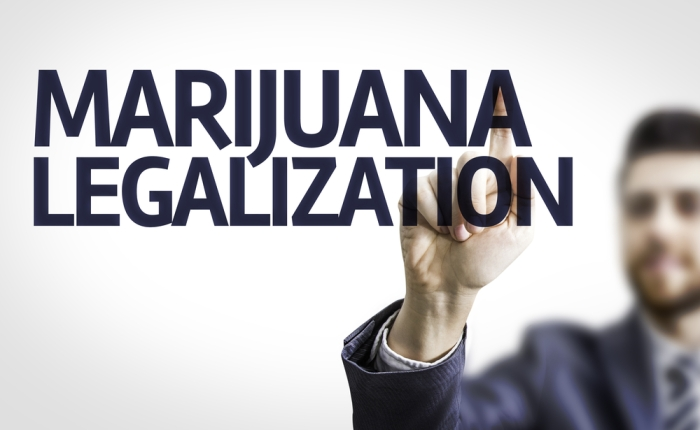 Drug Screening and Marijuana Legalization